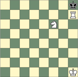 Rook and knight checkmate pattern