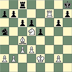 Sample game position for rook and knight mate